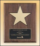 "12"" x 15"" Polished Star Plaque TRO-P4135"