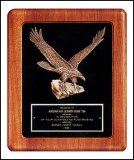 "14"" x 17"" Walnut Eagle Frame TRO-P2397"