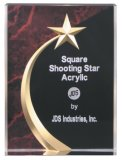 Carved Star Award