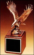 TRO-P1293-XL Bronze Eagle
