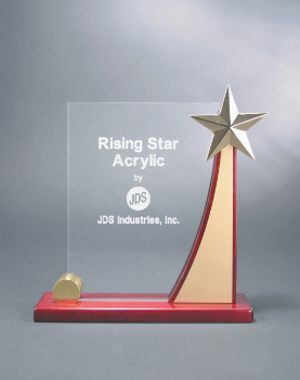 Rising Star Award (RSA395)